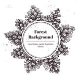 Hand drawn vector illustrations. Wreath with pine cones. Forest. Vintage elements Stock Photos