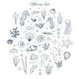 Hand drawn vector marine set with seahorses, shells, stars, seaweed, fish, coral and bubbles. Sea creatures outline on the white. Background in sketch style stock illustration