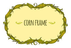 Hand drawn vector oval corn frame. Hand drawn vector frame of corncobs and leaves Stock Photography