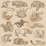 An hand drawn vector pack - ANIMALS Royalty Free Stock Photography