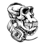 Skull of a gorilla with headphones. Hand drawn vector pencil illustration Skull of a gorilla with headphones, isolated on white background vector illustration