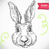 Hand Drawn Vector Portrait s and Tuxedo, Party Look, Easter Royalty Free Stock Photo