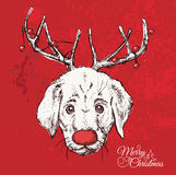 Hand drawn vector of pug with christmas Royalty Free Stock Photography