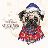 Hand drawn vector of pug with christmas Royalty Free Stock Photo