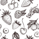Hand drawn vector seamless pattern - Collection of berries Royalty Free Stock Images