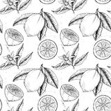 Hand drawn vector seamless pattern. Collections of Lemons. Branch with lemon. Lemon blossom Royalty Free Stock Photos