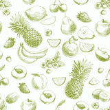 Hand drawn vector seamless pattern with fruits and royalty free illustration