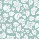 Hand drawn vector seamless pattern with mint leaves. Peppermint, spicy herbs, kitchen texture, Doodle cooking ingredient for design package tea, wallpaper Stock Images