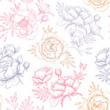 Hand drawn vector seamless pattern with peonies (flowers, leaves. ). Floral design elements. Perfect for invitations, greeting cards, blogs, textile, wallpaper Stock Image