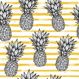 Hand Drawn Vector Seamless Pattern - Pineapple With Striped Back Stock Images