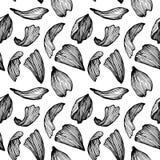 Hand drawn vector seamless pattern - rose petals. Hand drawn vector seamless pattern - rose petals stock illustration
