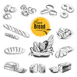 Hand drawn vector set of bakery products. Sketch. Vector set of Bread, bakery products. Vector illustration in sketch style. Hand drawn design elements Stock Photos