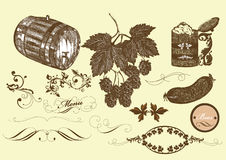 Hand drawn vector set beer and  brew beer elements Royalty Free Stock Image
