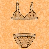 Hand drawn vector sexy lingerie set. Stock Photo