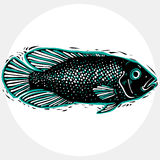 Hand drawn vector simple fish isolated, seafood graphic element. Royalty Free Stock Photos
