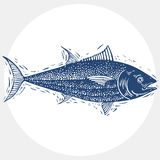 Hand drawn vector simple fish , seafood graphic element. Royalty Free Stock Photography
