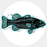 Hand drawn vector simple fish , seafood graphic element. Royalty Free Stock Image
