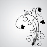 Hand drawn vector swirl flower elements Royalty Free Stock Photography