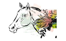 Hand drawn vector textured lined ink graphic horse head illustration with abstract tropical exotic flowers in pastel Stock Photos