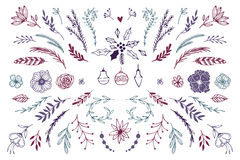 Hand Drawn vector vintage elements Royalty Free Stock Photos