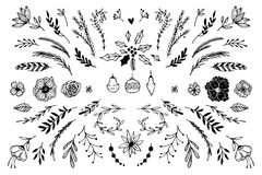 Hand Drawn vector vintage elements Stock Images
