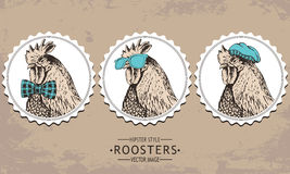 Hand-drawn vector vintage hipster style rooster Stock Images