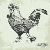 Hand-drawn vector vintage hipster style rooster Royalty Free Stock Photos