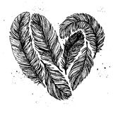 Hand drawn vector vintage illustration - Feathers in love. Stock Photos