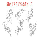 Hand drawn vector vintage sakura branches elements Stock Photo