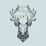 Hand drawn vector wild deer. Royalty Free Stock Photography