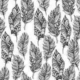Hand drawn vector zentangle doodle black feathers Stock Photos