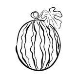 Hand-drawn vectorillustratie van een watermeloen met een takje en l Stock Foto's
