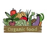 Hand drawn vegetable icon. Vector illustration. Hand drawn sketch watercolor vegetable icon with text on vintage board. Organic healthy food vector illustration Stock Photo