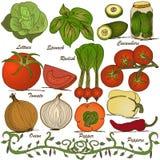 Hand drawn vegetable set 3 stock illustration