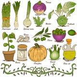 Hand drawn vegetable set 5 royalty free illustration