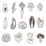 Hand drawn vegetables collection. Royalty Free Stock Photos