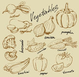Hand drawn vegetables Royalty Free Stock Photos
