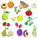 Hand drawn vegetables and fruit Stock Photo
