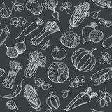 Hand drawn vegetables seamless pattern. Stock Photography
