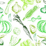Hand drawn vegetables set on a background. Vector Royalty Free Stock Photography