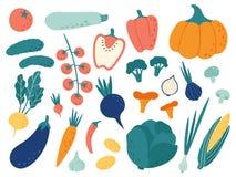 Hand drawn vegetables. Veggies nutrition doodle, organic vegan food and vegetable doodles vector illustration set stock illustration
