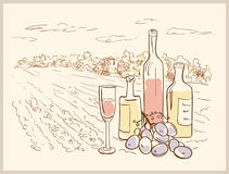 Hand drawn vineyard. Royalty Free Stock Photography