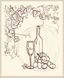 Hand drawn vineyard. Hand drawn vineyard with a bottle of wine Royalty Free Stock Image