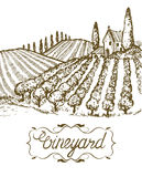 Hand drawn vineyard landscape. Vintage vector illustration. Lettering in frame. Stock Photos