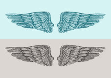 Hand drawn vintage angel wings. Sketch vector illustration Royalty Free Stock Photo