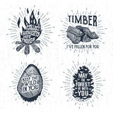 Hand drawn vintage badges set with textured bonfire, timber, tree trunk, and pine cone vector illustrations. Royalty Free Stock Photos