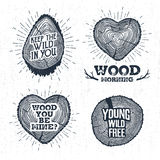 Hand drawn vintage badges set with textured tree trunks vector illustrations. Royalty Free Stock Photography