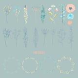Hand drawn vintage elegant floral elements Royalty Free Stock Images