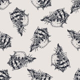 Hand drawn vintage exotic shell abstract pattern Stock Photography
