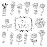 Hand Drawn vintage floral elements.  Flowers Stock Image